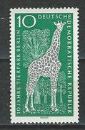 DDR Mi 1093 ** MNH Giraffa Camelopardalis