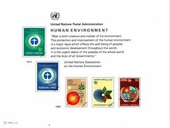 UNO VN ONU 1982 - Souvenir Erinnerungskarte Commemorative Card - Human Environment - New York -  VN Hauptquartier