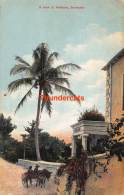 CPA A VIEW AT WISTOWE BERMUDA - Bermuda