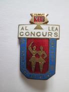 Romanian Communist Badge About 60s,size=22 X 16 Mm - Autres