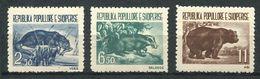 193 ALBANIE 1961 - Yvert 549/51 - Loutre Blaireau Ours (c) -  Neuf ** (MNH) Sans Trace De Charniere - Albania