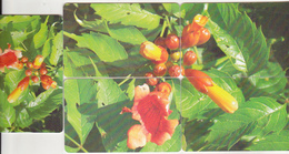 Romania 5different Old Chip Phonecards - Flowers  - Puzzle - Puzzles