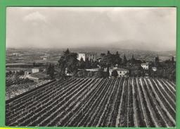 Custoza Locanda Al Vento Garda - Verona