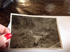 Photo Originale Noire Et Blanc Vosges Le Valtin - Personnes Anonymes
