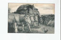 LES COMPAGNONS DE FRANCE AUX CHAMPS (CREE EN 1940) GRACE A EUX LA RECOLTE EST SAUVEE - Weltkrieg 1939-45
