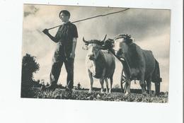 LES COMPAGNONS DE FRANCE AUX CHAMPS (CREE EN 1940) J'AI DEUX GRANDS BOEUFS - Weltkrieg 1939-45