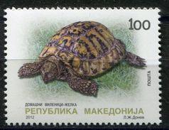 MACEDONIA 2012  Domestic Pets-Turtle MNH