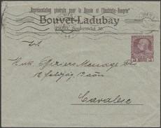 Autriche 1909. Enveloppe, Entier Timbré Sur Commande. Bouvet-Ladubay, Vins Et Crémants De Saumur Et Du Val De Loire