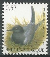Belgium 2002 (MNH) - COB 3136 - Black Tern (Chlidonias Niger)