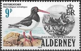 ALDERNEY 1984 Birds - 9p Oystercatcher MNH - Alderney
