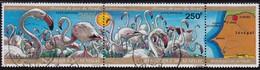 SENEGAL- Flamands Roses Du Parc De Djoudj- 1973