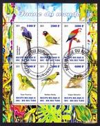 Republique Du Burundi 2011 - Parrots