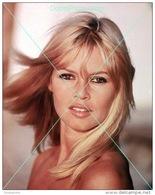 Brigitte Bardot - 0431 - Glossy Photo 8 X 10 Inches - Berühmtheiten