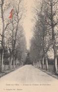 03 - COSNE SUR L'OEIL - Avenue Du Château De Petit Bois - France