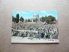 Giordania - Jordan - Prayers At Mosque Of Omar -  Non Viaggiata
