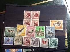 27450) Loltto Di Francobolli Del Sud Africa Nuovi MNH** Fauna Serie Completa - Sud Africa (1961-...)