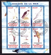 Republique Du Congo 2011 - Oiseaux De La Mer