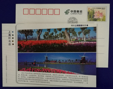 Windmill,Tulip Flowers,China 2013 Shanghai Flowers Harbour Park Advertising Pre-stamped Card