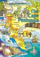 Cape Peninsula Tourist Attractions Of This 712km Wonderland - Südafrika