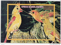 76128 Guinea Equatoriale 1973 Birds Pappagalli CARDENAL ROJO Parrots Perroquets Loros