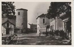 03 - GANNAT - Le Vieux Château Et Le Jardin De Gannat - France