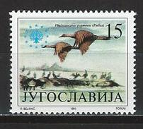 Jugoslawien Mi 2504 ** MNH Phalacrocorax Pygmaeus