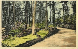 Flobecq-La Houppe-Route Sous-bois - Flobecq - Vloesberg