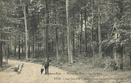 Flobecq-Bois-Milieu Du Bois-Le Calvaire - Flobecq - Vloesberg