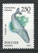 Russland Mi 358 ** MNH Eschrichtius Robustus