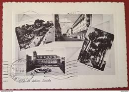 ALBANO LAZIALE  Saluti Da... Vedutine Piazza Roma Villa Doria Corso Matteotti Pineta - Italia