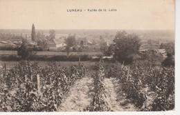 03 - LUNEAU - Vallée De La Loire - Francia