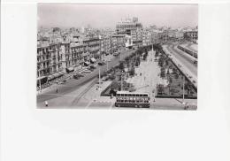 Postcard - Cadiz - The Ram¢n De Carronza Avenue - Very Good - Postcards