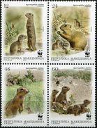 MACEDONIA 2011 WWF - Fauna - European Ground Squirrel  MNH