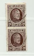 (499) Timbre Belgique Roi Albert I   N° 196 - 20c - 1922-1927 Houyoux