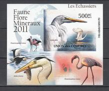 Comores 2011,1V In Block,IMP,birds,flamingo,reiger,vogels,vögel,oiseaux,pajaros,uccelli,aves,MNH/Postfris(L2830)