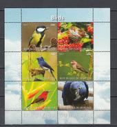 Burundi 2011,6V In Block,IMP,birds,koolmees,vogels,vögel,oiseaux,pajaros,uccelli,aves,MNH/Postfris(L2987) - Vogels