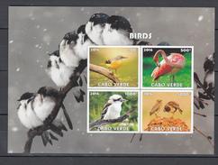 Cabo Verde 2016,4V In Block,IMP,birds,flamingo,liitle Bird,vogels,vögel,oiseaux,pajaros,uccelli,aves,MNH/Postfris(L2990) - Oiseaux
