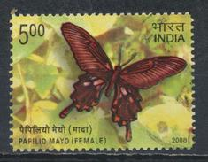 °°° INDIA - PAPILIO MAYO - 2008 °°°