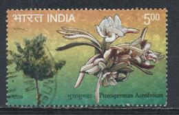 °°° INDIA - PTEROSPERMUM ACERIFOLIUM - 2009 °°°