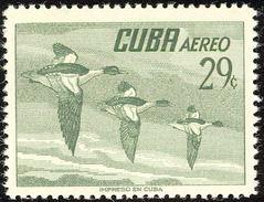 Cuba 1956.    Common Merganser    Mergus Merganser * Trace De Charnière.