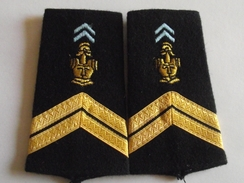 Fourreaux Grade Sergent Neuf Transmissions Armée De Terre - Divise