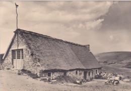 B14 - 63 - Puy-de-Dôme - Le Coq Noir - Musée Folklorique De La Vallorgue - Carte Photo - France