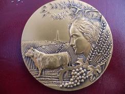 Médaille Bronze Neuve Assemblée Permanente Des Chambres D'agriculture. - France