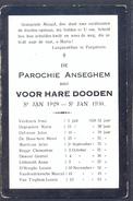ANZEGEM - ANSEGHEM - Voor Hare Dooden St. Jan 1929-1930 - Devotion Images