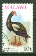 Malawi: 1975   Birds   SG478    10t    Used