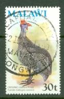 Malawi: 1975   Birds   SG481    30t    Used