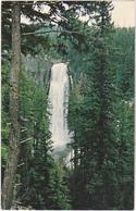 Postcard - Salt Creek Falls - Oregon 1959 New Unused - Postcards