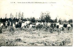 N°41875 -cpa Ferme école De Bellée à Créances -la Fenaison- - Cultures