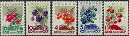 USSR, 1964. 3048-3052 (3132-3136) BERRIES
