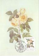 BELGIQUE  MAXIMUN Post Card  2 PIECES BENGALE DESPAREZ- BENGALE PHILIPPE  CITE JOYEUSE  (FEB170192-193) - Personaggi Famosi